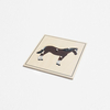 Animal Skeleton Puzzle: Horse(plastic knob)